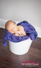 Holly Springs, NC Newborn Photographer