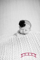 Raleigh, NC Newborn Photographer; Durham, NC Newborn Photographer