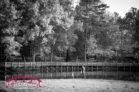 Bond-Park-in-Cary-Family-photographs
