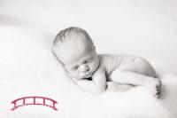 Holden's-apex-based-raleigh-newborn-photographer-in-studio