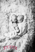 Raleigh Newborn Twin Girl Studio Photography