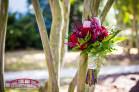 Hudson Manor Estate in Louisburg, NC Wedding Photographer