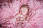 Red-and-pink-tulip-themed-north-carolina-newborn-studio-photographer