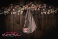 Professional-Newborn-photographer-based-in-Raleigh-North-Carolina-studio