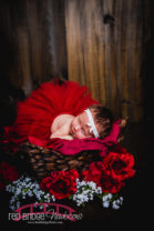 pink-and-red-theme-newborn-studio-session-in-Raleigh-Baby-Photography-studio